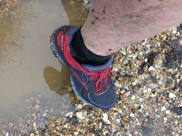 Trainer in rain puddle